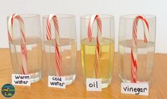 candy cane Christmas science experiment Best Picture For kids science experiments For Your Taste You Kindergarten Science, Science Classroom, Science For Kids, Science Fun, Physical Science, Science Centers, Elementary Science, Teaching Science, Earth Science