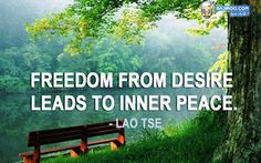 These 29 Lovable Images Would Help You Attain Inner Peace