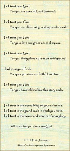 Thoughts Seeds  Trust  Faith