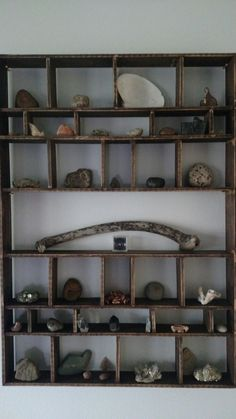 Diy rock collection shelf
