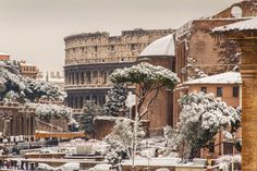 Snowy Coliseum