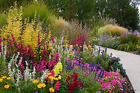 Landscapes - Images | David Winger - Yes, Xeriscape IS colorful and vibrant!  Colorado is great for drought-tolerant perennials