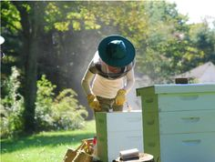 Every time I start feeling overwhelmed by all I'm learning about beekeeping (mites, foulbrood, yikes!), I just have to read this post to remember why I'm learning all of it and it gets me excited about starting my hives this year!
