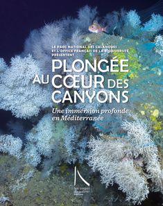Les Pages du Gabier - Plongée au cœur des canyons L Office, Exploration, Parc National, Movie Posters, Movies, Earth Science, Underwater, Reading, Films
