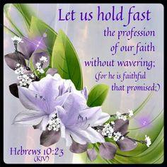 Hebrews 10:15 KJV