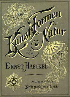 Kunst Formen der Natur, by Ernst Haekel