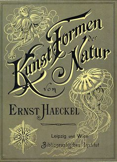 This amazing book is the source of much inspiration for my work. Ernest Haeckel's 'Art forms in nature'.