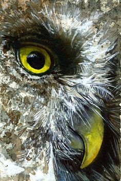 Eyes of Owls 23 Painting