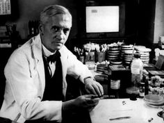 1928 - Alexander Fleming discovers penicillin - AP Photo