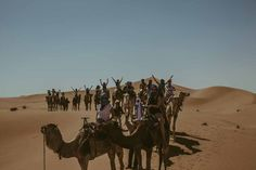 Desert Candles organizes tours in Morocco. Experience genuine hospitality, ancient history, rich culture and majestic nature in Morocco with Desert Candles% Desert Tour, Ancient History, Trekking, Morocco, Camel, Tours, Nature, Animals, Naturaleza