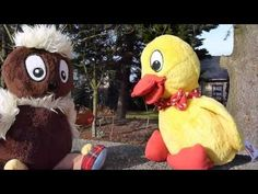 Frühjahrsputz im Garten mit Pittiplatsch.mp4hu, hu Ferdinand, Childhood Memories, Pikachu, Puzzle, Teddy Bear, Cartoon, Disney Characters, Kids, Movies