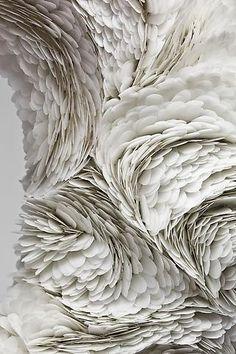 Paper Feathers. Plumas de papel.