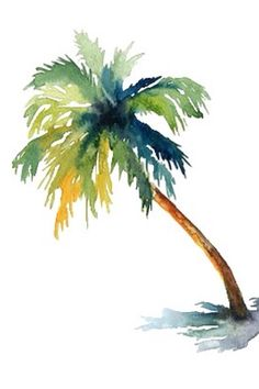 'Watercolor palm tree' Sticker by shannonfraney Watercolor Trees, Easy Watercolor, Watercolor Drawing, Watercolor Cards, Palm Tree Drawing, Palm Tree Paintings, Palm Tree Art, Palm Trees Beach, Tropical Art