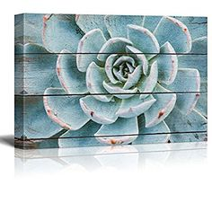 Wall26 - Green and Blue Succulent - Rustic Floral Arrangements - Pastels Colorful Beautiful - Wood Grain Antique - Canvas Art Home Decor - 16x24 inches