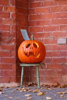 Jack-o-lantern - pumpkin carving Halloween Jack, Holidays Halloween, Halloween Themes, Halloween Pumpkins, Halloween Crafts, Happy Halloween, Halloween Decorations, Halloween Designs, Halloween Quotes