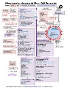 From histamine-intolerance.info.  Histamine Intolerance & Mast Cell Activation cascade of symptoms.    One of my symptoms not mentioned here is fibromyalgia (I also have intermittent other symptoms but esp fibro, edema, headaches, heart palpitations.)
