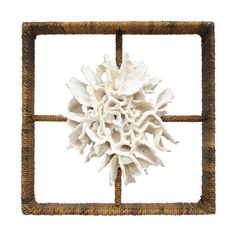 palecek+cake+coral+shadow+box+-+Stone+cast+cake+coral+fixed+in+hand-woven+abaca+wrapped+frame.+Use+on+the+wall+or+as+a+table+top+decor.+No+hanging+hardware;+use+nails+or+screws+for+mounting.+