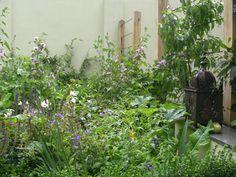 Duncan Terrace | Projects | Richard Miers - Garden Design Terrace, Garden Design, Projects, Plants, Balcony, Log Projects, Blue Prints, Patio, Landscape Designs