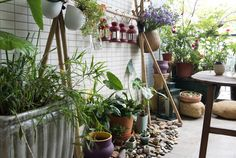 Clever Idea of using smooth stones for the potted plant area. Use plants to merge your garden and your home