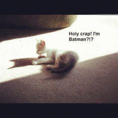 cutest revelation ever.
