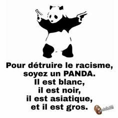 Combat le racisme, soit un panda Funny Attitude Quotes, Funny Quotes, Quote Citation, Positive Attitude, Funny Moments, Slogan, Funny Tshirts, Decir No, Quotations