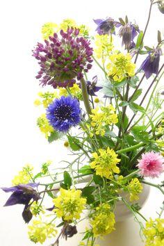 Flowers from my own garden mirjamh
