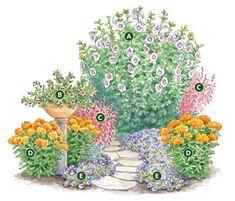Grow a garden hummingbirds love: This simple five-plant combo will turn your garden into a hummingbird hot spot!