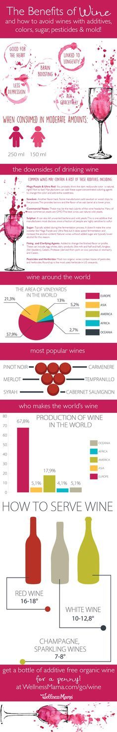 all-about-wine-infographic
