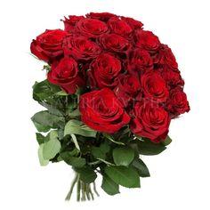 Výsledok vyhľadávania obrázkov pre dopyt kytica ruží foto Bratislava, Ikebana, Bonsai, Animals And Pets, Cool Stuff, Plants, Health, Fitness, Flowers