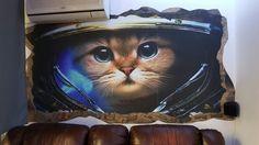 Wallpaper 3D 3d Wallpaper, Owl, Wallpapers, Bird, Gifts, Animals, Presents, Animales, 3d Desktop Wallpaper