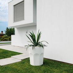 Pot Design - Cubalibre, PLUSt®