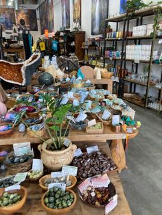 Crystals And Gemstones, Stones And Crystals, Crystal Room, Crystals Store, Crystal Aesthetic, Plant Aesthetic, Woman Cave, Good Energy, Bedroom Vintage
