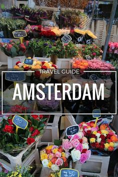 Top 10 #thingstodo in #Amsterdam! Fabulous travel guide by Topaz & Sapphire.