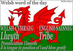 Welsh word of the day: Llwyth/Tribe