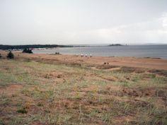 Kalajoki beach, Kalajoen rantaa./ Loma-asuntomessut 2014 Jrr Tolkien, The Dunes, Finland, Mythology, Mountains, Beach, Water, Travel, Outdoor