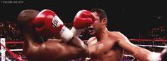 boxing animated GIF