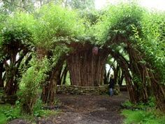 Serenity in the Garden: Willow Palaces, Cathedrals and Domes - Sanfte Strukturen