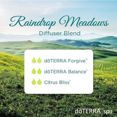 It's been raining the last few days so I have been diffusing this amazing trio to freshen up our indoor air and to turn these April showers into our indoor Raindrop Meadow.  #essentialoils #diffuserblend