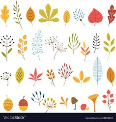Set of hand drawn autumn floral design elements. Download a Free Preview or High Quality Adobe Illustrator Ai, EPS, PDF and High Resolution JPEG versions. ID #1653492.