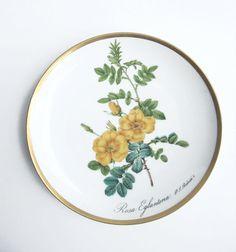 Vintage Floral Porcelain China Plate PJ Redouté by goodiesoldies