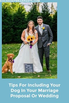 Want to include your pup in your wedding? Or maybe you want your dog to help you propose to your significant other? Here you'll find some tips to help include your furry best friend in your… More Living With Dogs, Dog Wedding, Marriage Proposals, Significant Other, Lifestyle Blog, Picture Video, Dogs And Puppies, Love Her, Best Friends