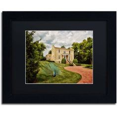 Trademark Fine Art A Peacock on the Lawn Canvas Art by Lois Bryan Black Matte, Black Frame, Size: 16 x 20, Multicolor