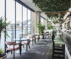 Unwind at Hyde Hacienda Sydney while sipping on cocktails. Visit Pullman Quay Grand Sydney Harbour's restaurant and bar on Circular Quay now. Sydney Restaurants, Australia Tourism, Australia Beach, Sydney Australia, Western Australia, Rooftop Restaurant, Rooftop Bar, Quay Restaurant Sydney, Restaurant Design