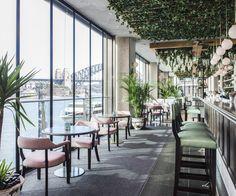 Waterfront Cocktail Bar Circular Quay | Hacienda Sydney