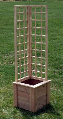 A small trellised planter perfect for patios and corner accents.  (clematis, tomatoes, morning glory...) I like this idea!