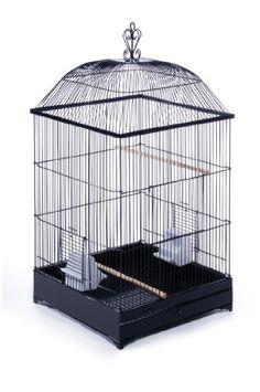 Prevue Pet Products 880BLK Jefferson Cockatiel Cage, Black Prevue http://www.amazon.com/dp/B00EQ28W08/ref=cm_sw_r_pi_dp_es3rub1Y9D29R