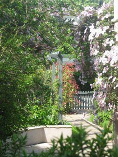 East Lothian village garden designed by Goose Green Design