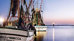 From Hilton Head Island on up to Myrtle Beach, we landed the state's freshest catch.