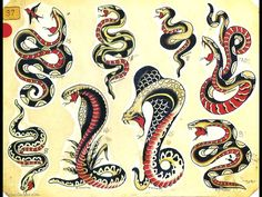 Traditional Tattoo Flash Tattoo Flash Traditional Snake Sailor Jerry Picture Image