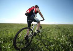Saldanha Nature Reserve MTB Trail in Saldanha, Western Cape. Where: SAS Saldanha Nature Reserve, West Coast, Western Cape Level: easy Type of route: . Stuff To Do, Things To Do, Mtb Trails, Nature Reserve, South Africa, Cape, Lifestyle, Search, Travel